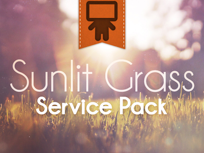 SUNLIT GRASS SERVICE PACK
