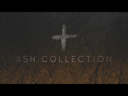 ASH COLLECTION