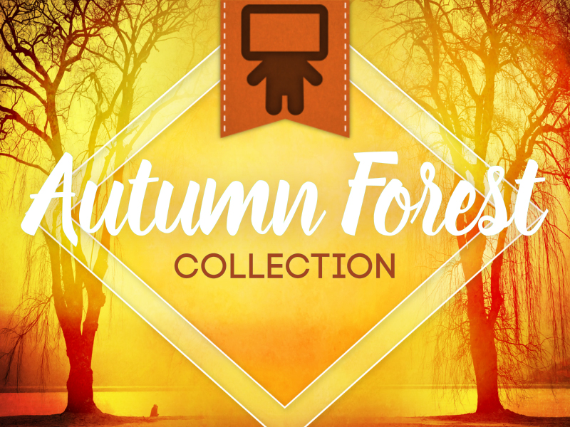 AUTUMN FOREST COLLECTION