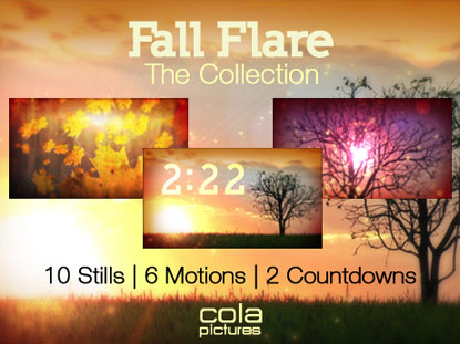 FALL FLARE COLLECTION