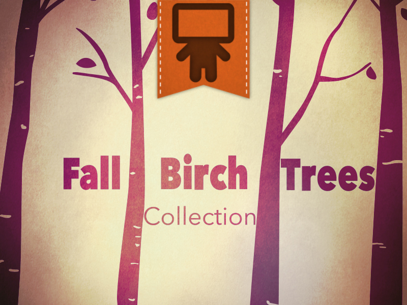 FALL BIRCH TREE COLLECTION