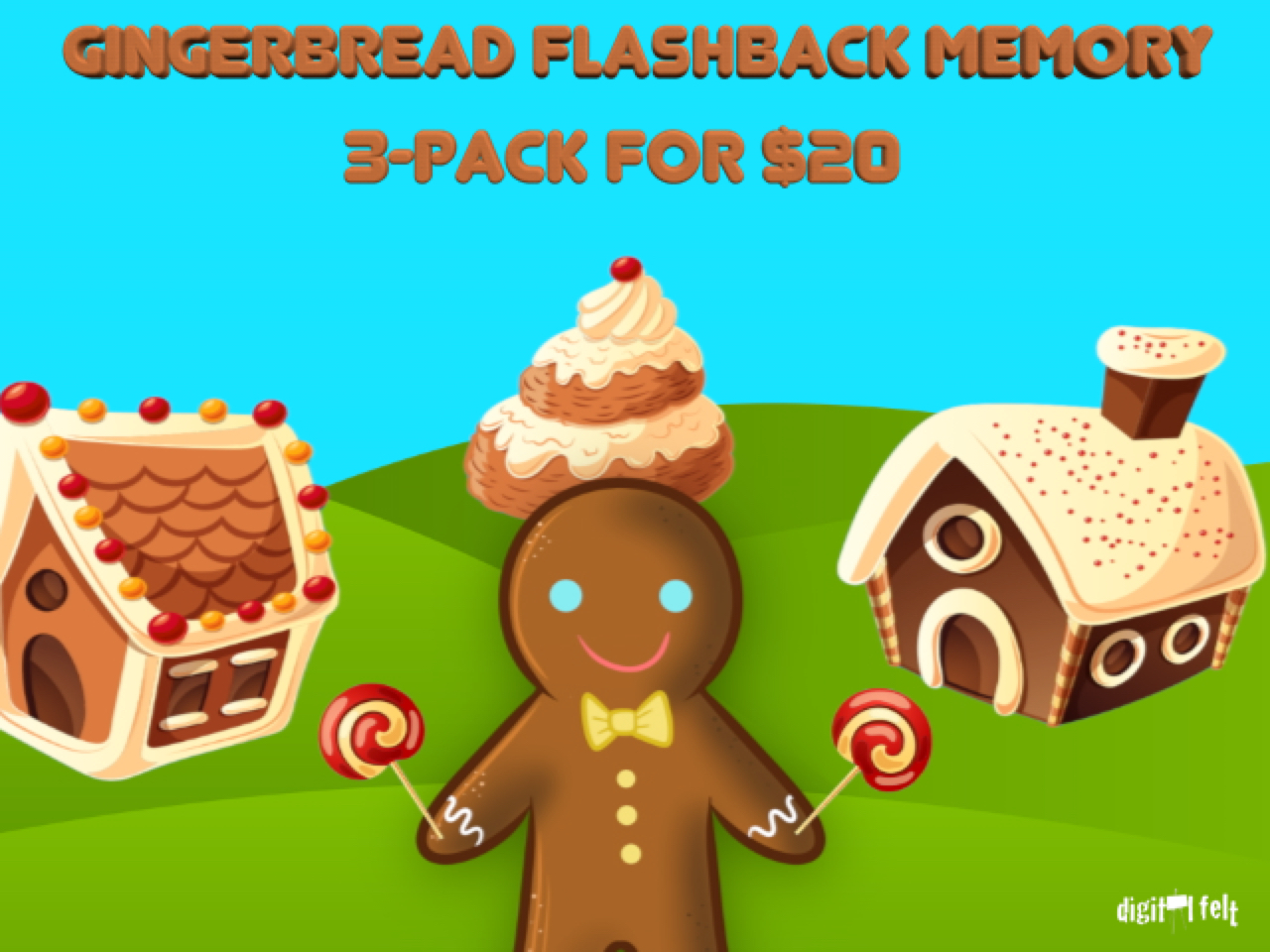 GINGERBREAD FLASHBACK MEMORY 3-PACK