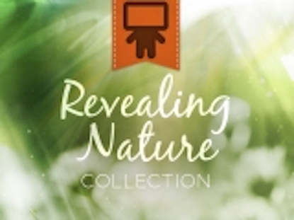 REVEALING NATURE COLLECTION