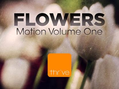 FLOWERS - VOLUME 1