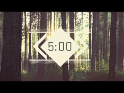 FOREST SCENE COUNTDOWN