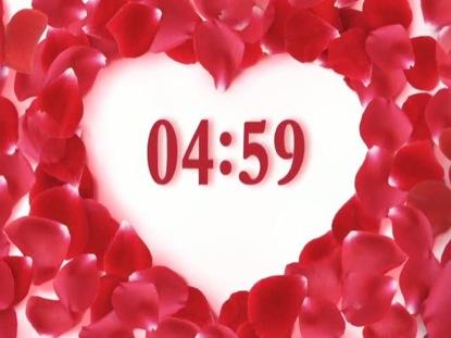 ROSE PETAL COUNTDOWN