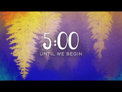 CEDAR LANE COUNTDOWN