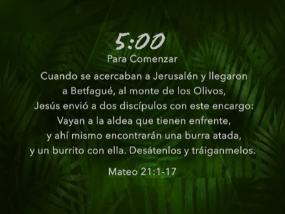 PALM LEAF SCRIPTURE COUNTDOWN SPANISH
