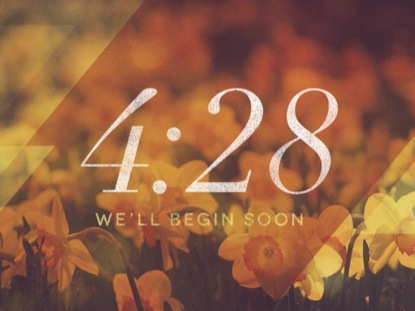 MORNING FLOWERS COUNTDOWN