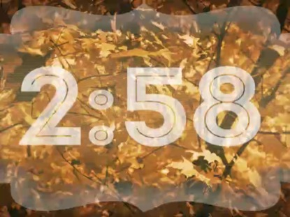 AUTUMN FORESTRY 3 MINUTE COUNTDOWN
