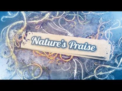 NATURE'S PRAISE 2