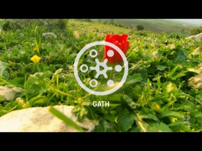 PROMISED LAND GATH