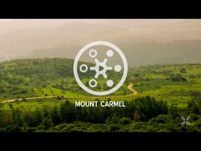PROMISED LAND MT CARMEL