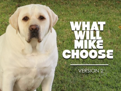 WHAT WILL MIKE CHOOSE VERSION 2