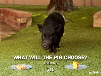 WHAT WILL THE PIG CHOOSE 3