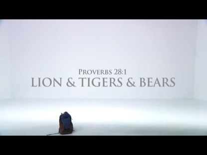 LIONS TIGERS BEARS PROVERB