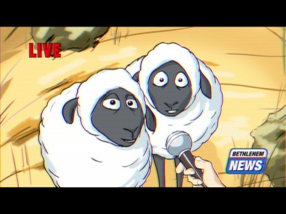 BETHLEHEM SHEEP INTERVIEW