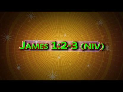 JAMES 1 2-3 NIV