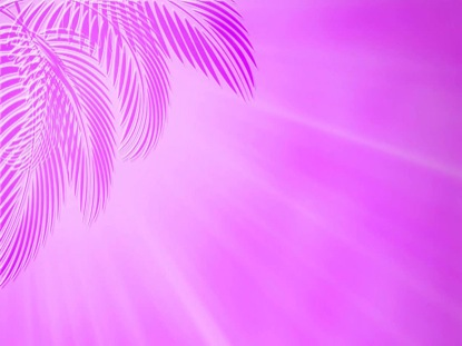 PALMS PURPLE