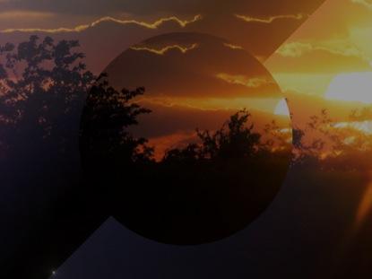 SUNRISE TREES LOOP 2