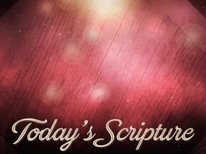 CHRISTMAS BOKEH SCRIPTURE