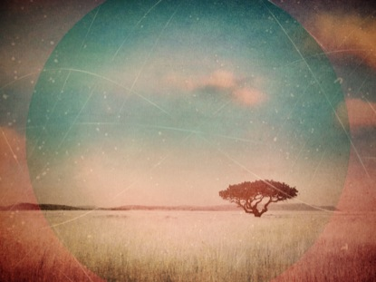CREATION LANDSCAPE 01