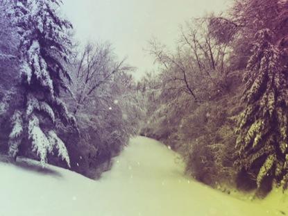 FOREST SNOW VINTAGE WORSHIP LOOP
