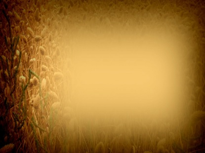 SEPIA WHEAT