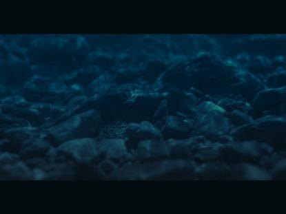 OCEAN FLOOR FRAME