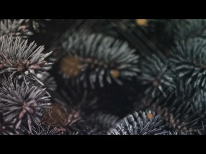 CHRISTMAS GLOW 3