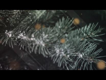CHRISTMAS GLOW 4