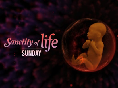 SANCTITY OF LIFE LOOP