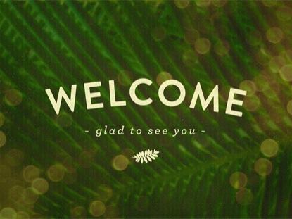 PALM BOKEH WELCOME