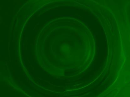 GREEN TUNNEL LOOP