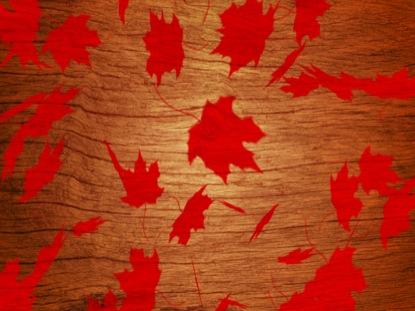 RED LEAVES LOOP