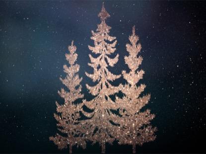 CHRISTMAS SPARKLE 10