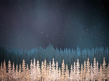 CHRISTMAS SPARKLE 2