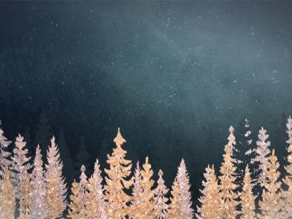 CHRISTMAS SPARKLE 9