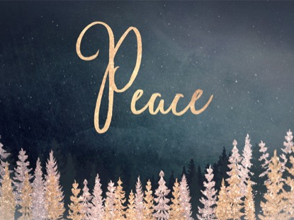 CHRISTMAS SPARKLE PEACE