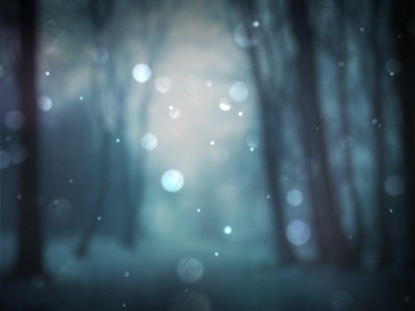 WINTER BOKEH 2