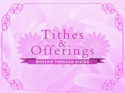 PINK FLORAL TITHES