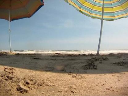 BEACH MOTION 2