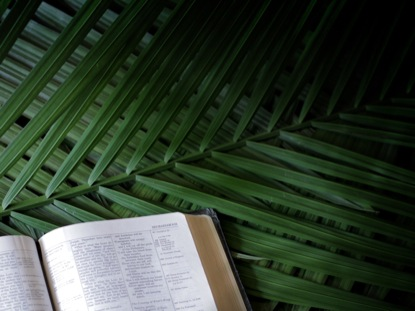 BIBLE PALM SUNDAY BRANCHES