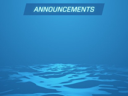 DIGITAL WAVES ANNOUNCEMENTS