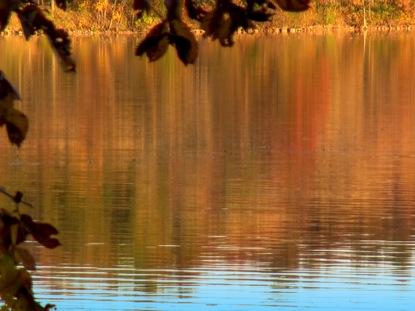 FALL FOOTAGE LEAVES LAKE