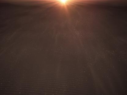 LENT DESERT SANDS WARM