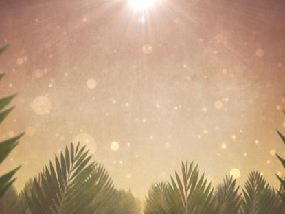 PALM SUNDAY EPIC ENERGY