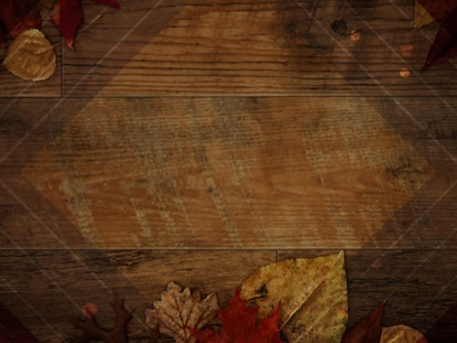 RUSTIC WOOD AUTUMN LEAVES DARK