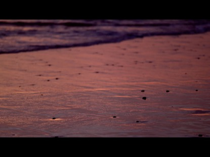 PINK SANDY SHORELINE AT SUNSET WITH WAVES