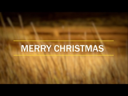 REEDS CHRISTMAS